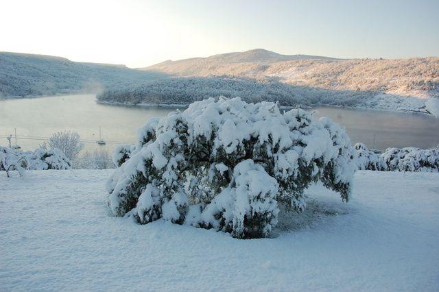 Album - neige-2012
