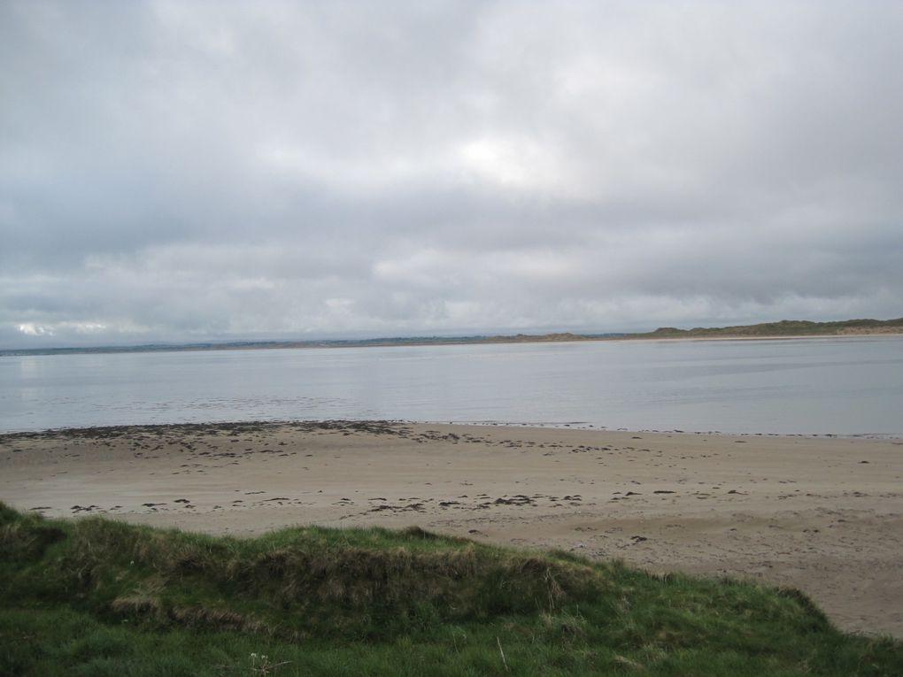 2010 - Irlande-4