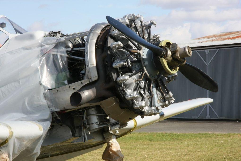 Détails du F-AZRB ex Ferté Alais, basé à Blois.depuis novembre 2008. Il a été redécoré dans les couleurs d'un avions école de Pensacola.