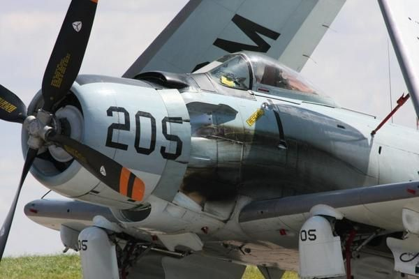 Album - Warbirds close-up skyraider