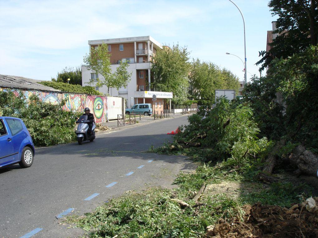 Album - massacre a la tronconneuse avenue Raspail
