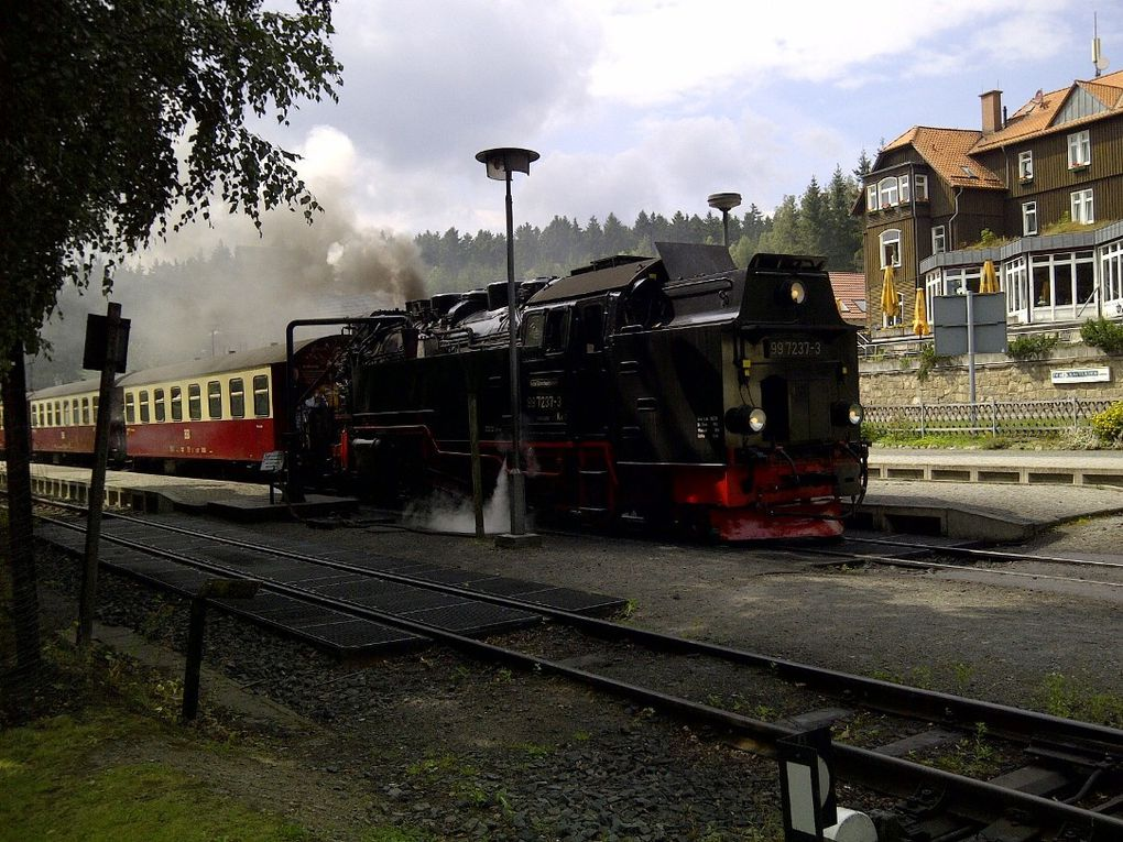 4 Etappen - 4 Tage - ca 100km über den Hexenstieg- Streakrunner erobern den Harz
