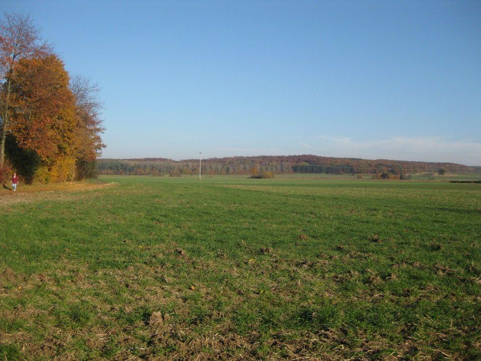 Album - Herbstlauf-Wetterau-November-2011