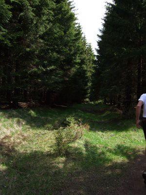 Album - Impressionen-von-der-36km-Walkingstrecke