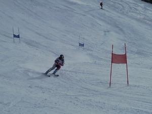 Toutes les photos concernant l'option ski alpin: la préparation physique, le stage à Tignes, les sorties en hors-piste, etc...