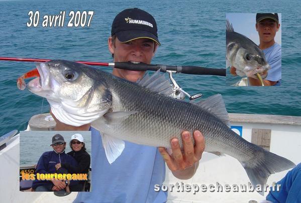 Quelques uns de mes meilleurs clichés 2007...