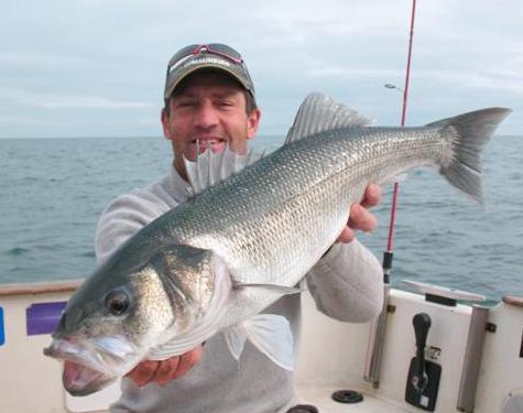 Quelques uns des plus beaux poissons de l'année 2008...
