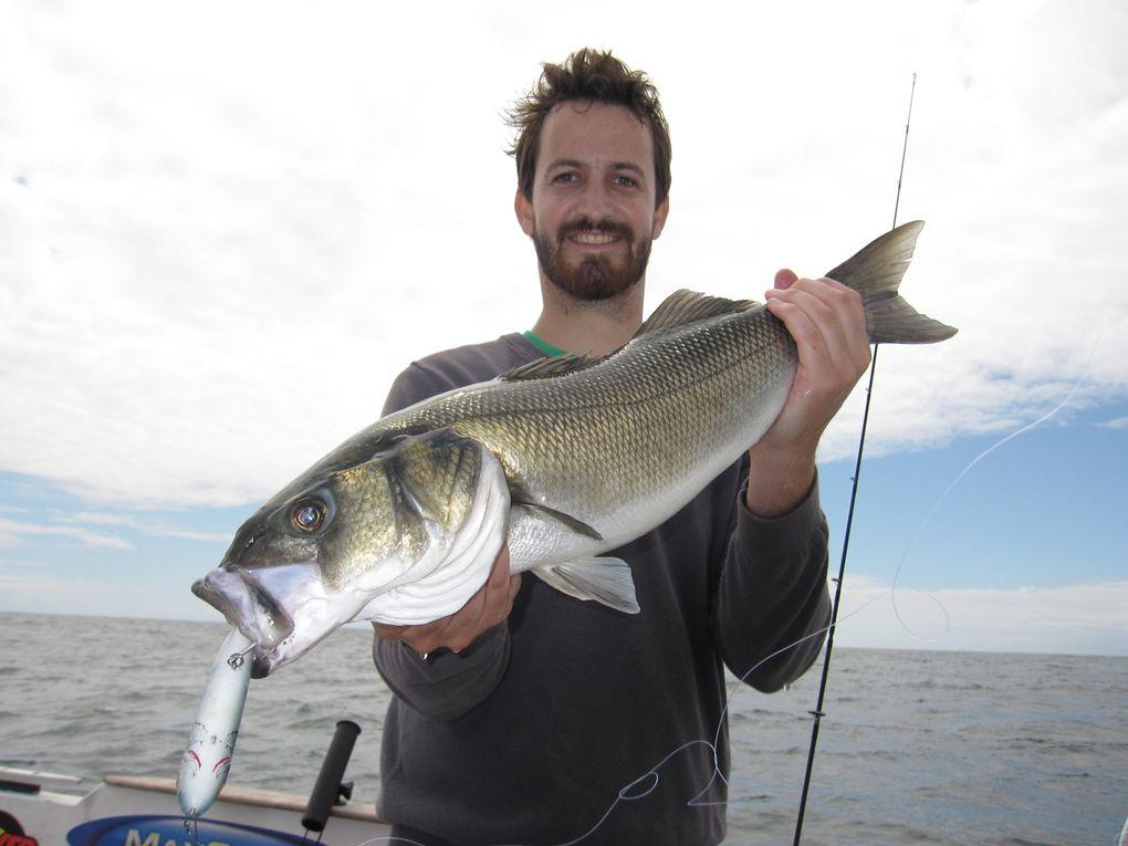 Les plus gros poissons 2009