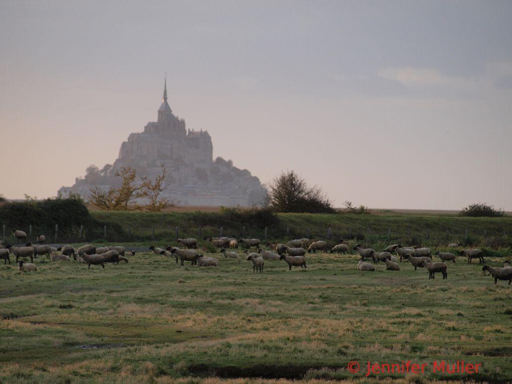 Album - Mont-Saint-Michel