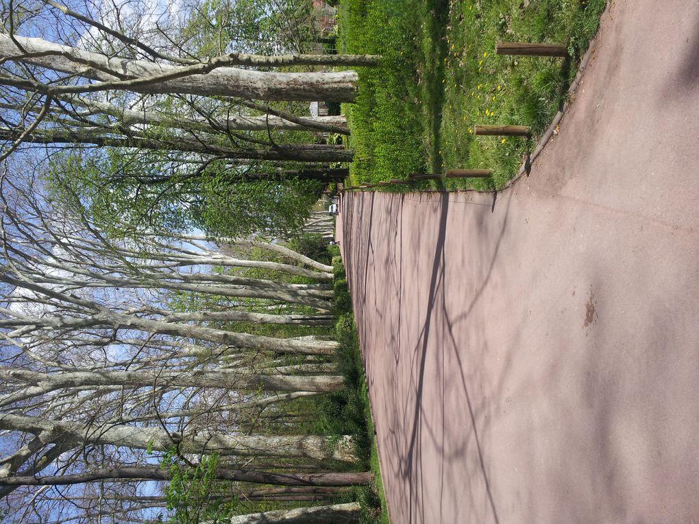 voici le parc de la tete d'or