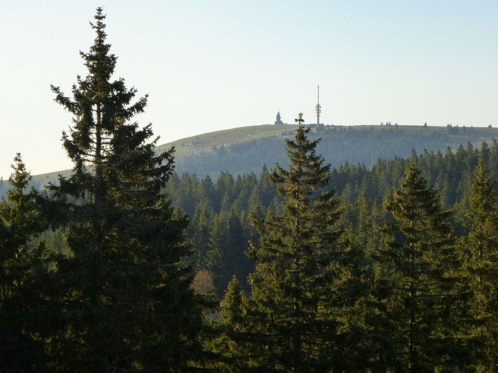 Le troisième sommet de la Forêt-Noire : la Herzogenhorn et ses 1415 mètres ! Il se classe juste après le Feldberg (1493 m) et le Seebuck (1447 m) et aussi, il est sis 1 petit mètre au-dessus du Belchen (1414 m) ...