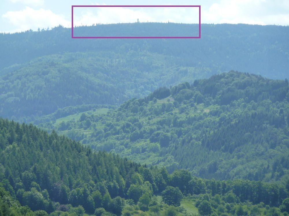 Découverte d'un massif naturel et sauvage exceptionnel, de la Forêt-Noire du Nord : le Hohloh, ses lacs et ses tourbières, classés en réserve biologique nationale !