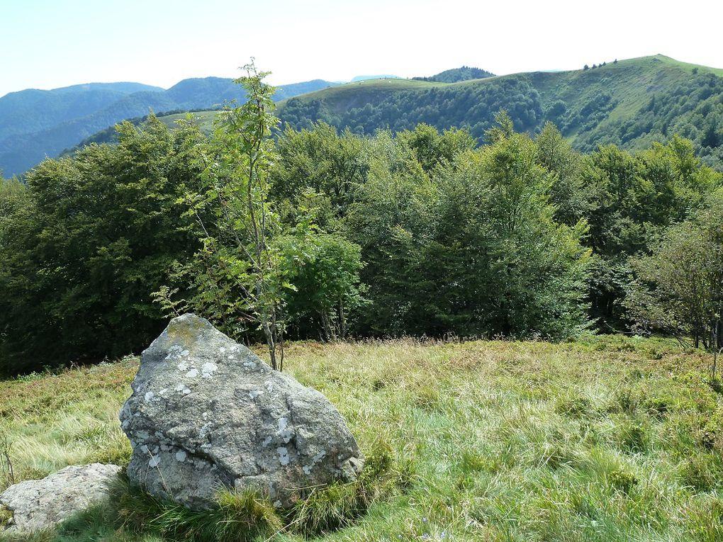 Découverte du sommet séparant les trois vallées de la Thur, de Bussang et de Cornimont : le Drumont, localisé entre les cols routiers de Bussang au Sud et d'Oderen au Nord !