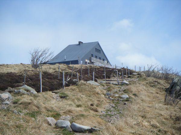 Découverte du plus prestigieux et célèbre sommet vosgien : le Hohneck, troisième sommet des Hautes-Vosges, avec ses 1366 mètres d'altitude, son panorama circulaire sur 360 degrés, son hôtel-restaurant renommé, sa vue exceptionnelle sur les Al