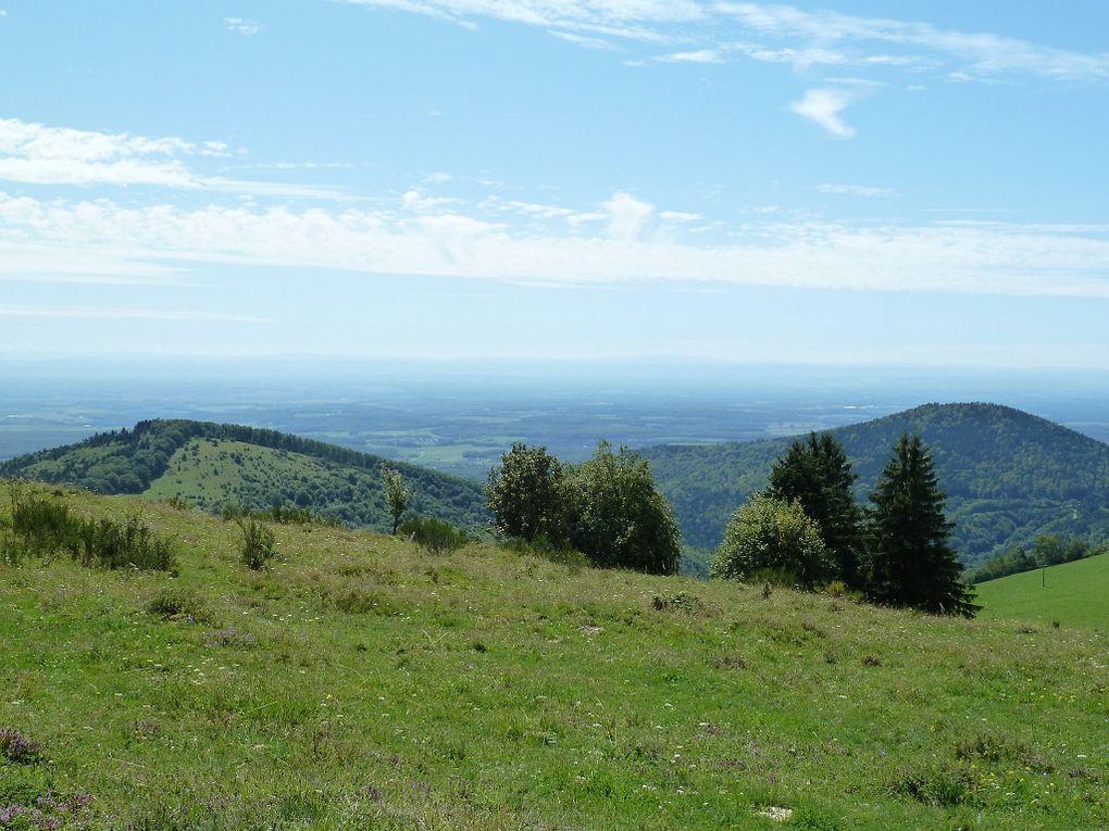 Découverte de l'un des plus remarquables massifs montagneux des Hautes-Vosges : le Thanner-Hubel, au-dessus de Thann et de Masevaux, avec son exceptionnel panorama sur les Alpes Suisses, par temps propice, particulièrement clair et dégagé !!!