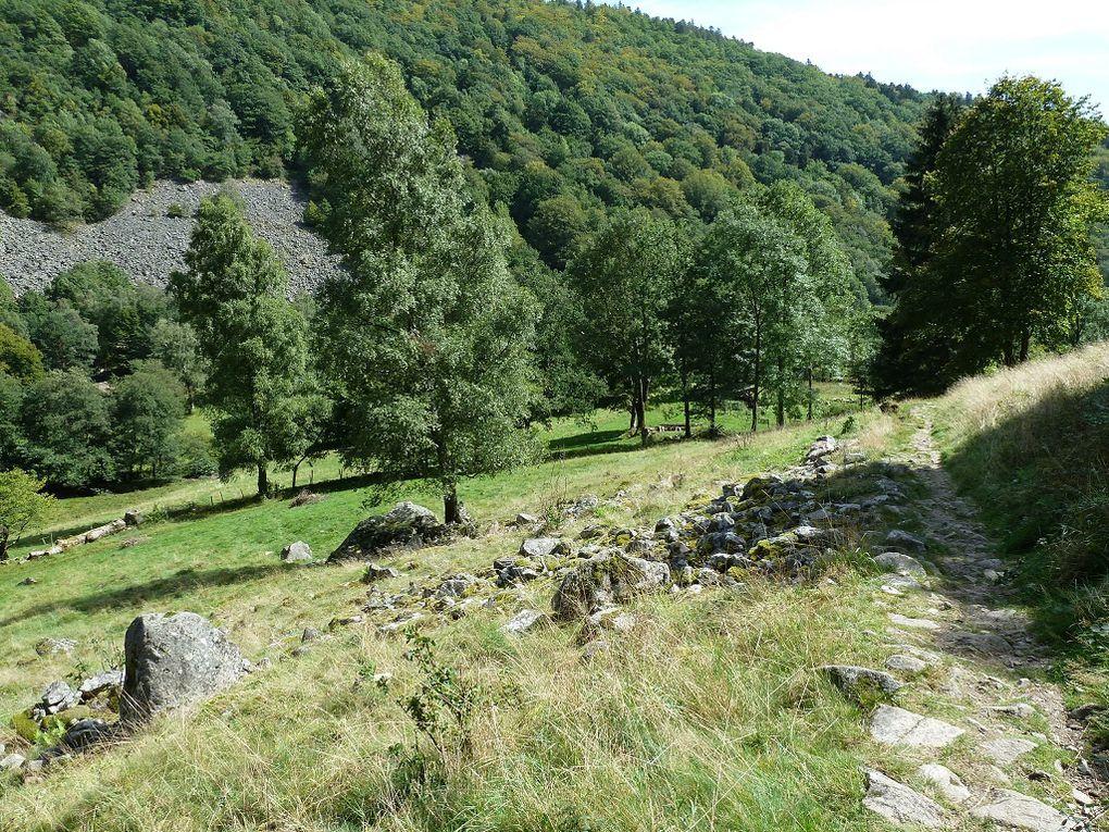Découverte de la remarquable vallée glaciaire de la Wormsa (située au Sud-Ouest de Munster et de Metzeral, au pied du Hohneck et du Kastelberg, mais également, des Spitzkoepfe ! ). L'une des principales ramifications, de la vallée principale de