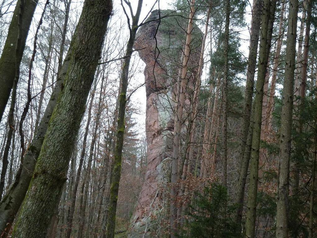 Découverte de l'un des plus anciens et mythiques sites d'escalade sportive de tout le Palatinat allemand : l'Adelsfels, situé à mi-distance de Schönau, de Fischbach et de Rumbach !