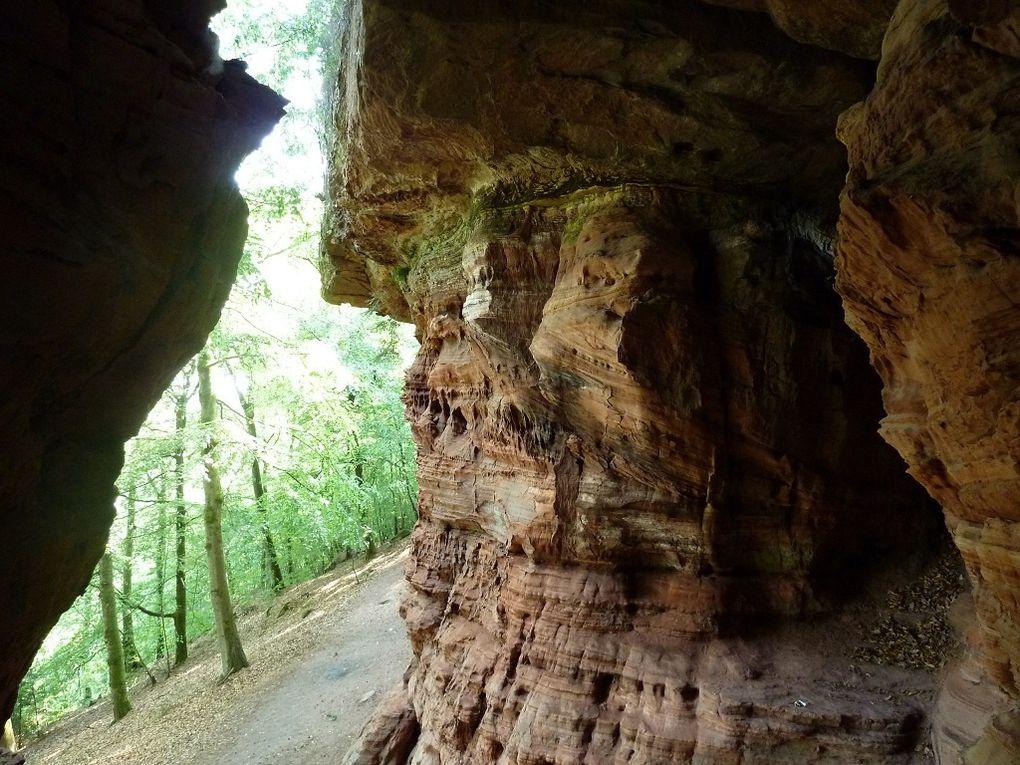 Découverte de l'un des sites les plus exceptionnels et importants, de tout le Palatinat allemand : le site des Altschlossfelsen, situé à mi-distance, entre Eppenbrunn (Allemagne) et Roppeviller (France) ! Soit au total, une barre rocheuse longue d