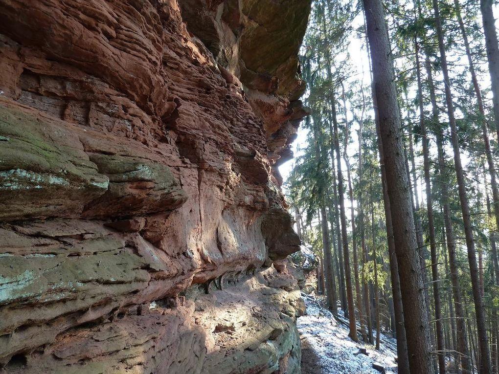 Découverte en hors-piste sauvage, de l'un des lieux rocheux les plus isolés et méconnus du Palatinat allemand : le Guckenbühl !