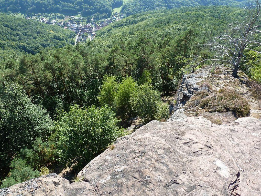 Découverte d'un site rocheux méconnu et remarquable du Trifelsland, en plein coeur du Palatinat allemand : le Kleiner Hahnstein, faisant partie du prestigieux massif du Rehberg !