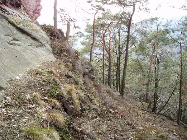 Découverte d'un site rocheux très peu connu et couru du Palatinat allemand : le Haselstein, situé dans les environs de Darstein et d'Oberschlettenbach !