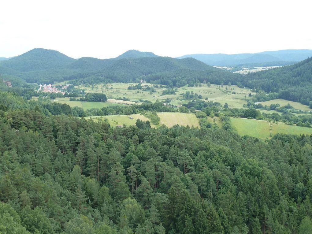 Découverte de l'un des sites d'escalade parmi les plus connus et fréquentés, de tout le Wasgau (Palatinat allemand) : le mythique Hochstein, situé directement au-dessus de Dahn !