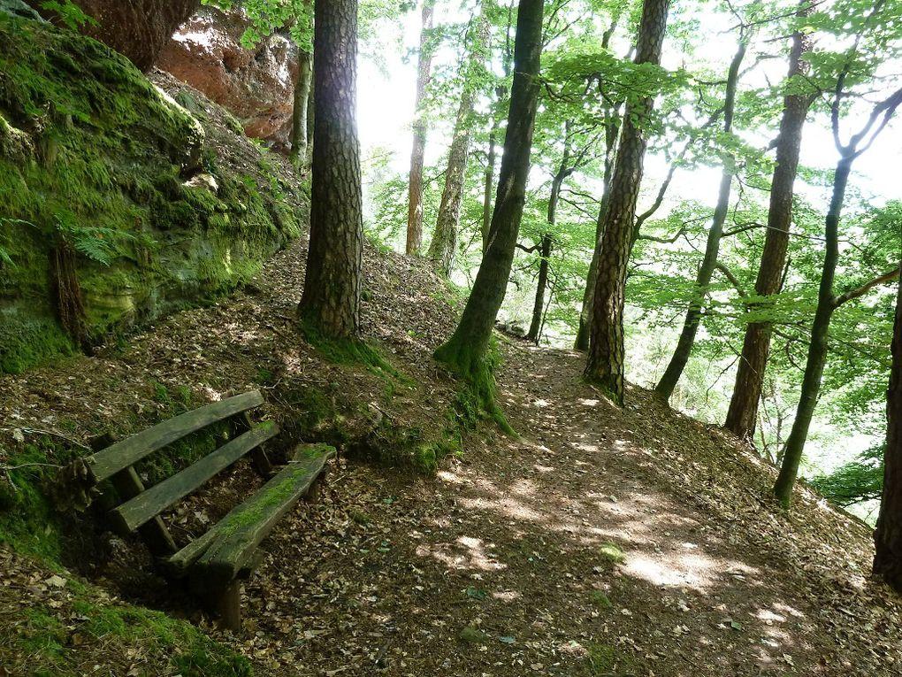 Découverte d'une crête rocheuse remarquable, localisée entre Lemberg et Ruppertsweiler (Palatinat allemand) : le Hummelberg, altitude 474 mètres.