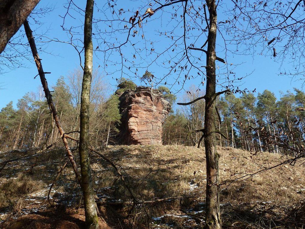 Découverte d'un site rocheux très peu connu et fréquenté du secteur d'Annweiler : le Langenfels, localisé au Nord de Rinnthal et de la route B10 !