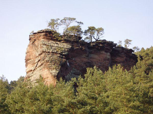Découverte du plus spectaculaire rocher d'escalade de la sauvage vallée du Glasental, à Erfweiler dans le Palatinat allemand : le Rappenwand !