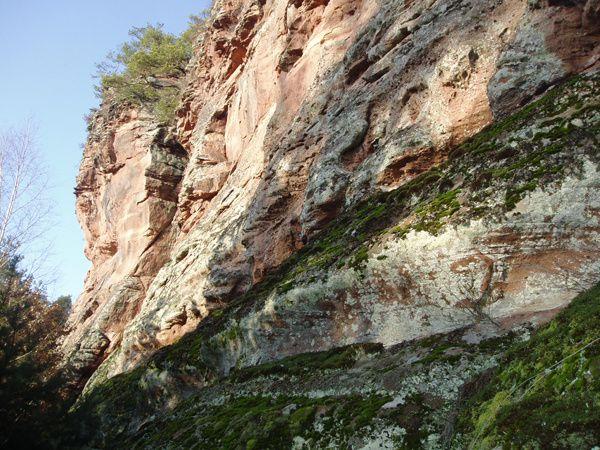 Découverte d'une crête rocheuse déchiquetée monumentale et sauvage : celle du Retschelfels, sise au-dessus de Bruchweiler-Bärenbach (vallée de la Wieslauter).