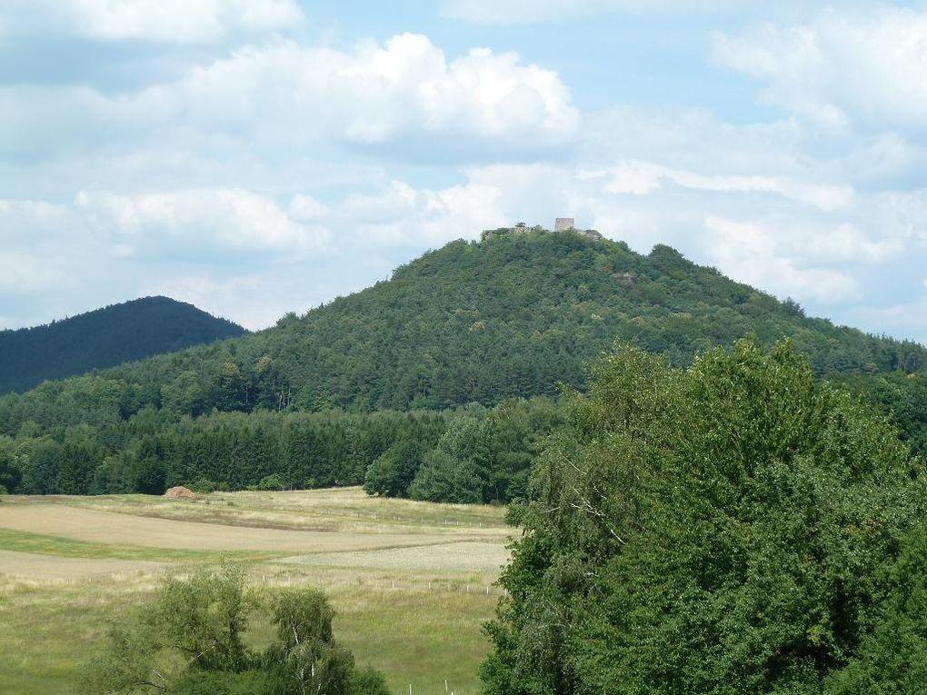 Découverte de l'un des sites rocheux les plus exceptionnels de tout le Palatinat allemand : le légendaire Rödelberg, situé au-dessus d'Erlenbach et de Vorderweidenthal.