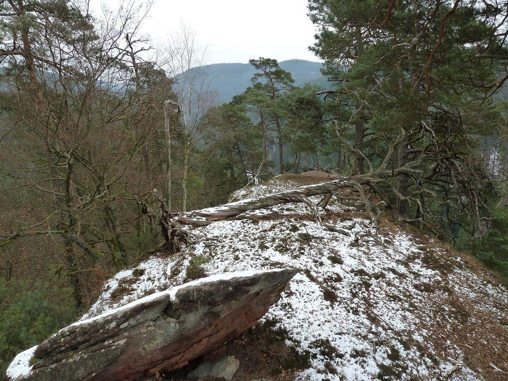 Découverte d'un site rocheux perdu et sauvage, mais extrêmement pittoresque, du Palatinat allemand : le Freischbachwand :