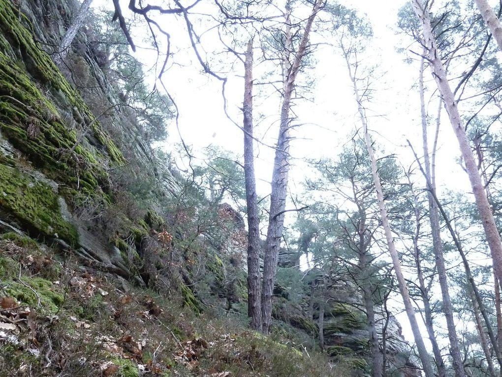 Découverte du site rocheux le plus sauvage et méconnu du secteur de Lug, dans le Palatinat allemand : le Kisselbachwand (ou Kisselfels) !