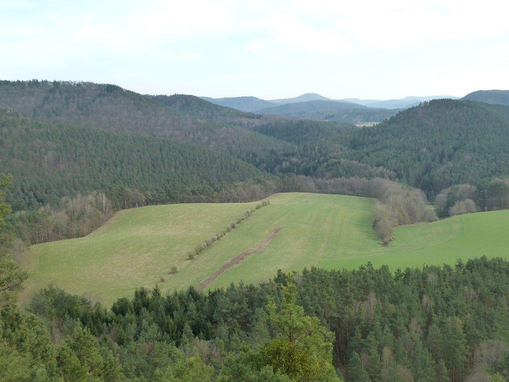 Découverte d'un site panoramique méconnu et situé à l'écart des sentiers battus, entre Erfweiler et Schindhard : le Satterberg !