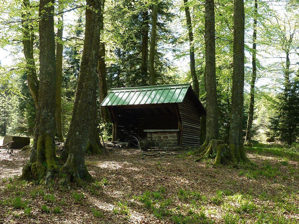 Découverte du point culminant des Vosges gréseuses, au sein de la vallée de la Bruche : le mythique Rocher de Mutzig (alt. 1010 m).