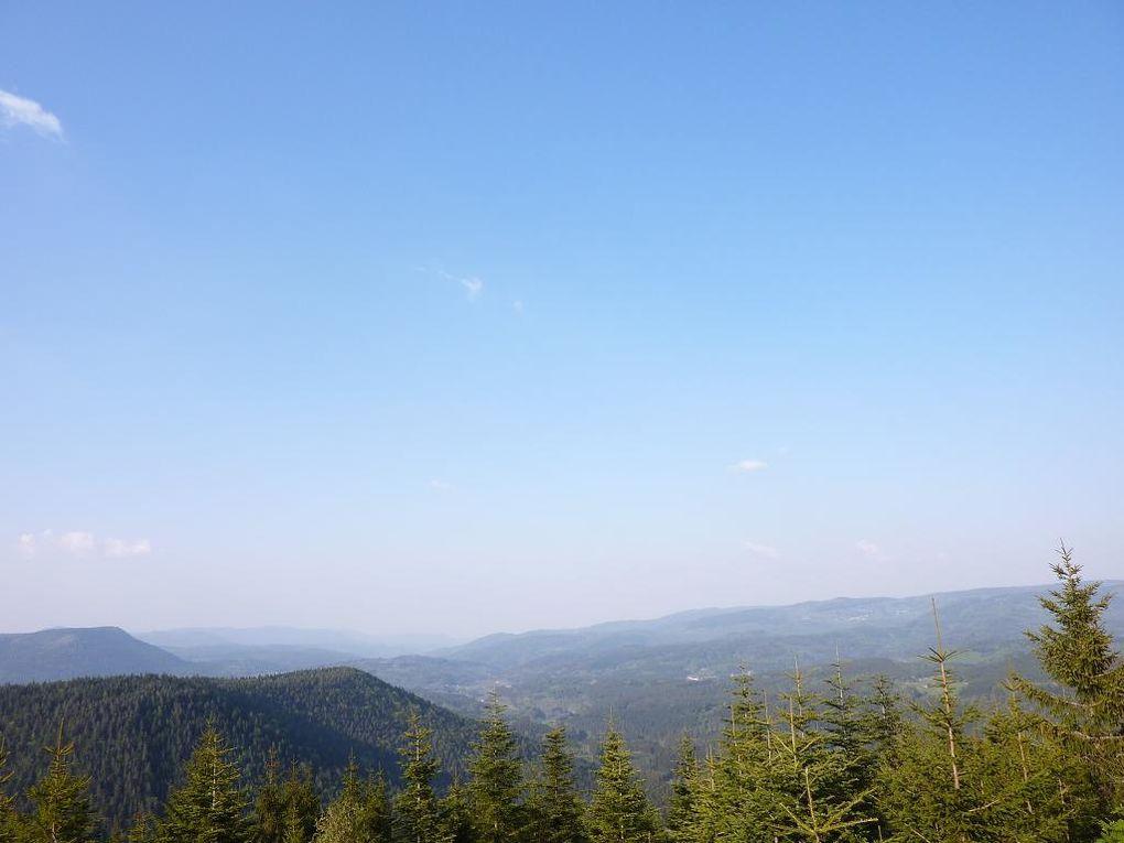 Découverte d'un site peu connu de la haute-vallée de la Bruche, au-dessus de Sâales : le Rocher des Enfants (massif du Solamont, alt. maxi : 830 m).