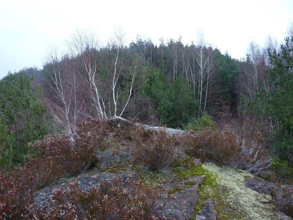 Découverte des rochers remarquables, peu connus et peu fréquentés, situés autour d'Eguelshardt et de la Petite-Suisse mosellanne.