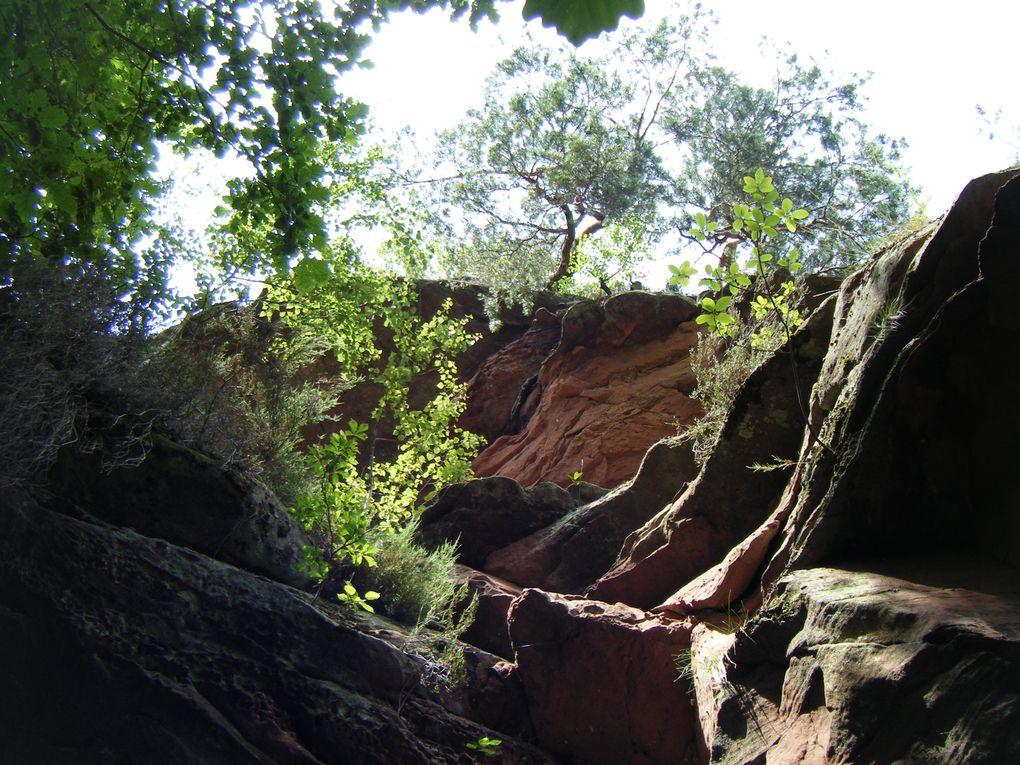 Découverte d'un rocher remarquable injustement méconnu des randonneurs, à Philippsbourg : l'Indianerfels, avec un panorama inattendu, unique en son genre !