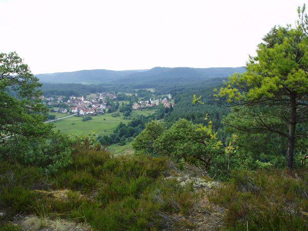 Découverte dans la vallée de Schwarzbach, au-dessus de Dambach, des rochers du Modenberg (Dambach Point de Vue, Rocher de l'Homme et Rocher de la Femme ! ). Une crête extraordinairement pittoresque.