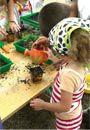 Découvrez quelques photos de l'espace macadam fleur, installé dans l'école.