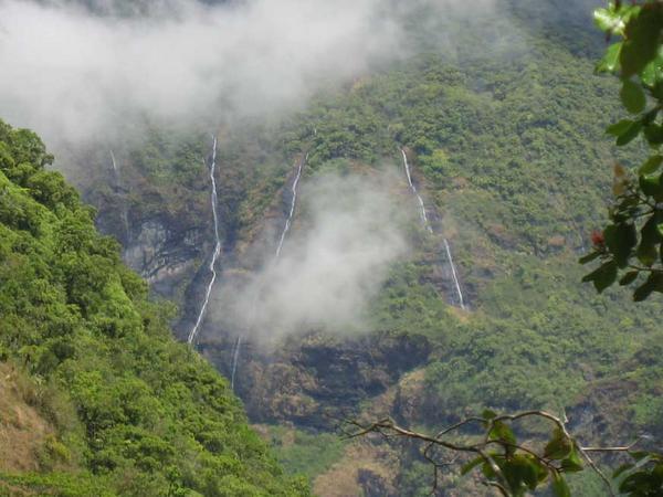 Randonnée partant de Mahinarama.Point de départ pour le Mont Orohena, sommet le plus haut de Tahiti