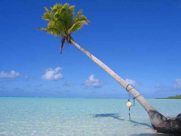 Atoll acheté par Marlon Brando, dans les îles de la société. Un des motu est appelé l'île aux oiseaux