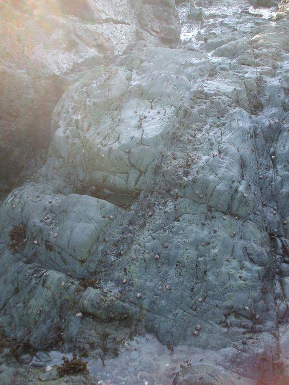 L'ile blanche est située dans la baie de paimpol au large de kerity. Le site présente des coulées volcaniques et des formations géologiques particulières