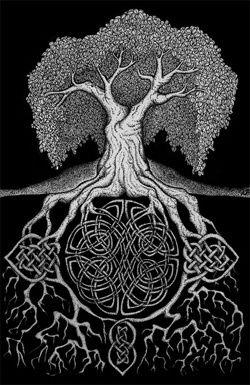 Du vrac, des entrelacs, des branches noires qui se découpent sur un ciel clair, des arbres, des bruissements de feuilles, murmures & chuchotements.