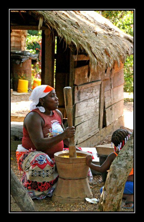 Album - Guyane4