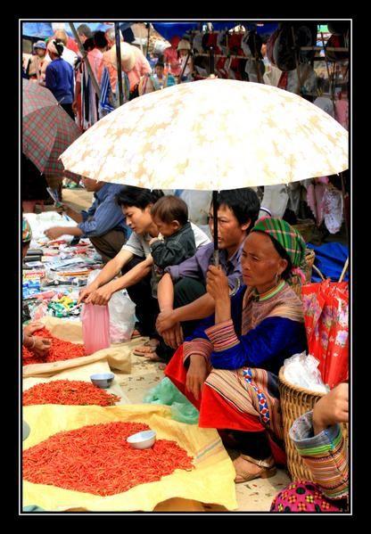 Album - Vietnam5