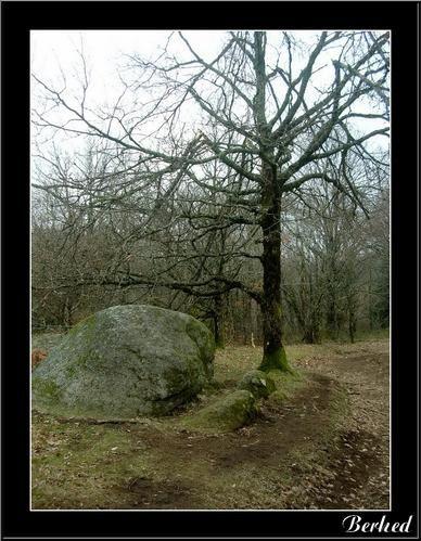 Mes balades le plus souvent dans le sud-ouestBordeaux, Castres,Collonges-la-rouge....