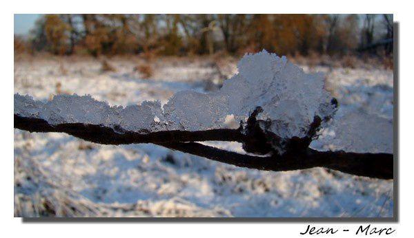Album - hiver