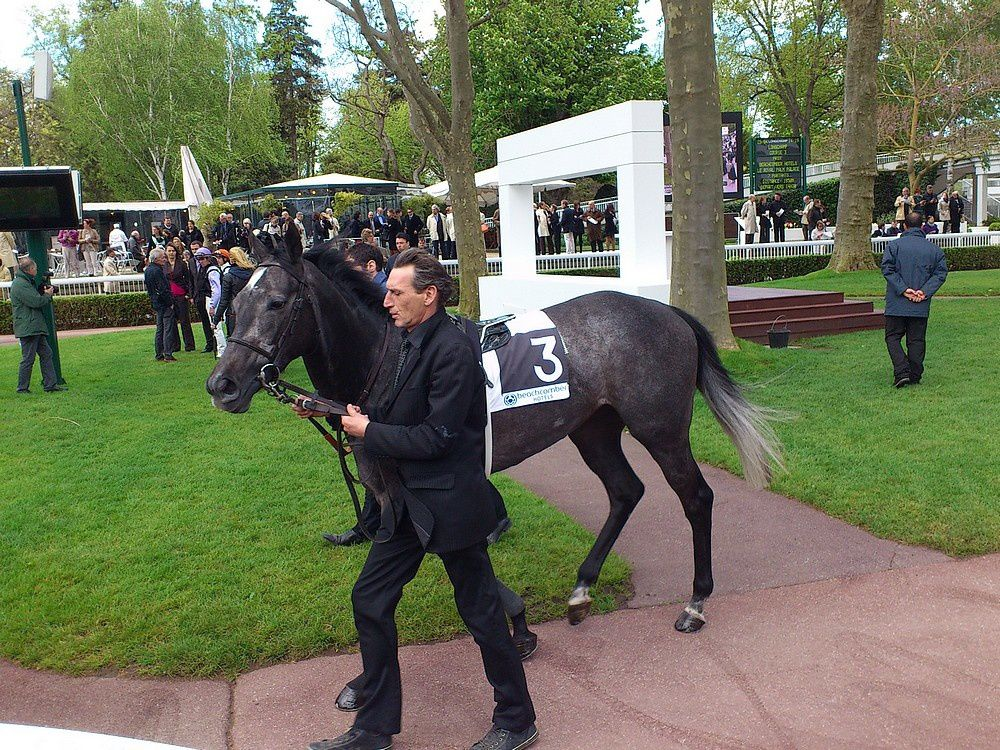 Album - 20120429-LONGCHAMP