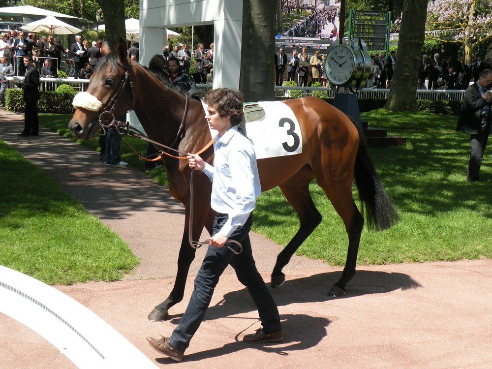 Album - 20120513-LONGCHAMP